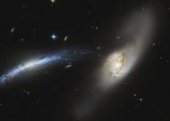 In this spectacular image captured by the NASA/ESA Hubble Space Telescope, the galaxy NGC 2799 (on the left) is seemingly being pulled into the centre of the galaxy NGC 2798 (on the right).  Interacting galaxies, such as these, are so named because of the influence they have on each other, which may eventually result in a merger or a unique formation. Already, these two galaxies have seemingly formed a sideways waterspout, with stars from NGC 2799 appearing to fall into NGC 2798 almost like drops of water.  Galactic mergers can take place over several hundred million to over a billion years. While one might think the merger of two galaxies would be catastrophic for the stellar systems within, the sheer amount of space between stars means that stellar collisions are unlikely and stars typically drift past each other.